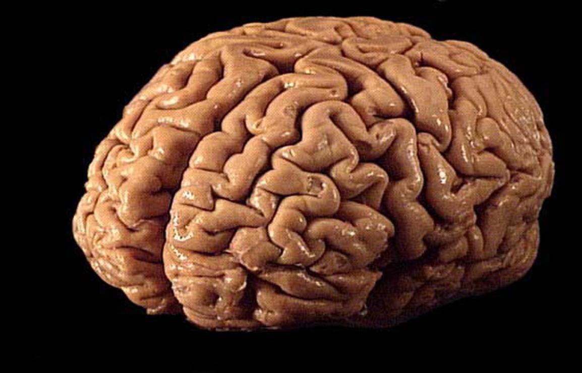 Ciencia, creencia y subjetividad. En defensa delPsicoanálisis.